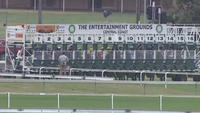 The Lane Yard To Compete At Gosford On Thursday