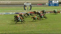 Scatter Blast Takes Out The 5th At Tamworth In Great Fashion