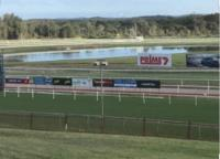 The Lane Yard To Compete With Miss Sleuth At Port On Saturday