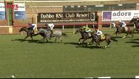 The Lane Yard Bags A Double At Dubbo Under Jake Pracey-Holmes