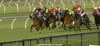 Oakfield Captain Runs A Beauty To Give The Lane Yard Two Runners For The Final