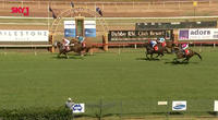 Captain's Legend Finishes 3rd After The Third At Dubbo