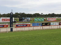 Port Macquarie Runners For The Lane Yard On Saturday