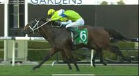Oakfield Missile Saddles Up For Racing At Rosehill On Saturday In The Listed Emirates Dark Jewel