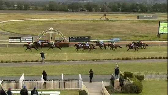 Oakfield Captain runs third at Mudgee under Adrian Layt