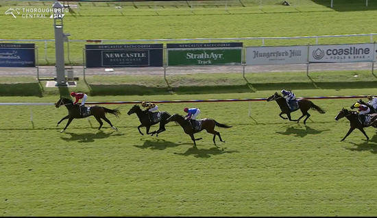 Obscene Runs a tidy third under Digger at Newcastle