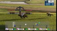 Thiswilldous Remains Consistent After Finishing 2nd Under Travis Wolfgram At Hawkesbury.