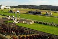 The Lane Yard Saddles Up For Racing At Gosford On Friday