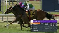 Zorocat Takes Out The 3rd At Newcastle Under Digger