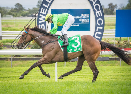Oakfield Prince wins on Debut