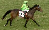 Oakfield Prince races away