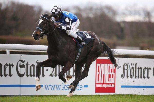 Double Dream Debuts In Style