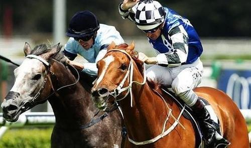 Salon Soldier's Half-Brother Claims First Australian Win