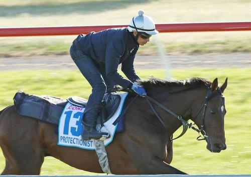 Trainer Says Protectionist On Target For Cup