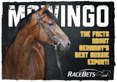 Mawingo Again On The Stallion Radar.