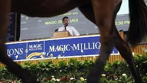 Four NEW Magic Millions Purchases- Including A Ladies Only Horse