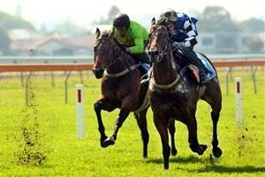 Uate Raring To Go At Rosehill