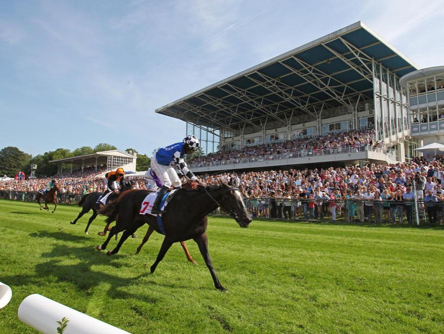Group 1 Success In Germany
