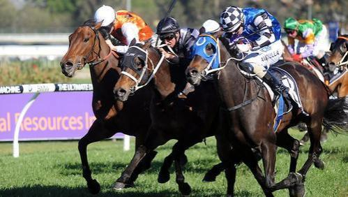 Sharnee Smashes Race Record In G3 Golden Pendant