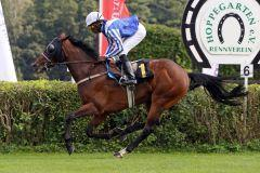 New German Stayer On The Way