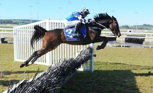 Glorious Sinndar make a dashing jumps debut