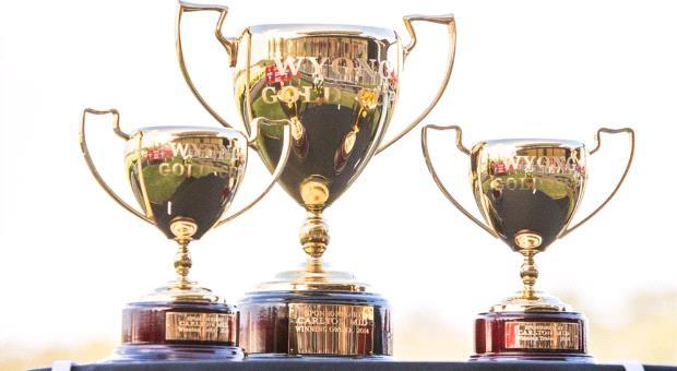 Slow Pace adds the Wyong Cup to the trophy cabinet !