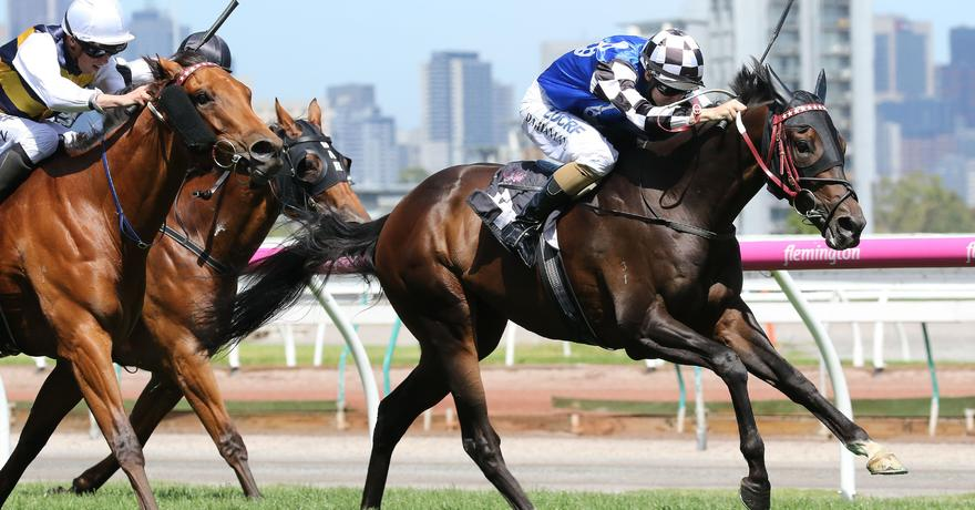 Goldstream gets on the board at Flemington