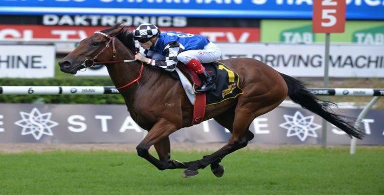 BIG DUKE JUSTIFIES SYDNEY CUP FAVOURITISM IN CHAIRMAN'S HANDICAP