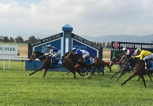 Australian Bloodstock Celebrate German Success