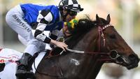 Brave Smash remains in Everest contention