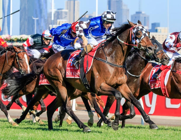 Spring of Success for Australian Bloodstock