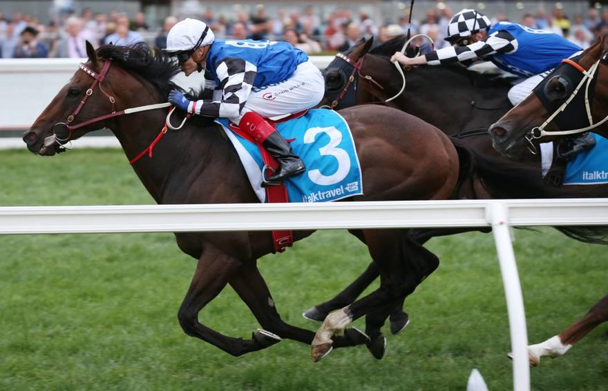 Australian Bloodstock weigh up next target for Brave Smash after Futurity quinella