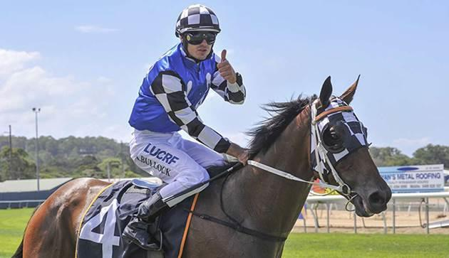 Triple G1 hopes for Australian Bloodstock