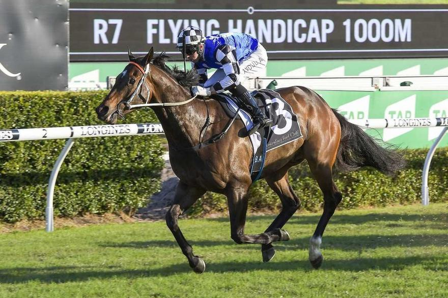 Tactical Advantage put his rivals to the sword at Randwick