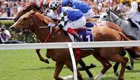 Top Prospect set to target Ballarat Cup
