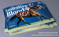 Magic Millions 2019 Yearling Purchases