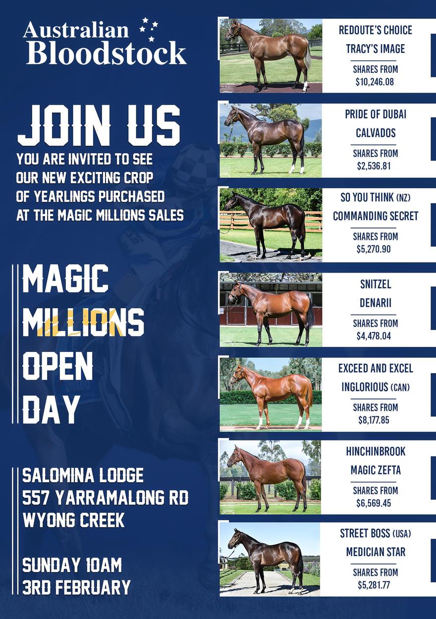 MAGIC MILLIONS OPEN DAY FEB 3RD