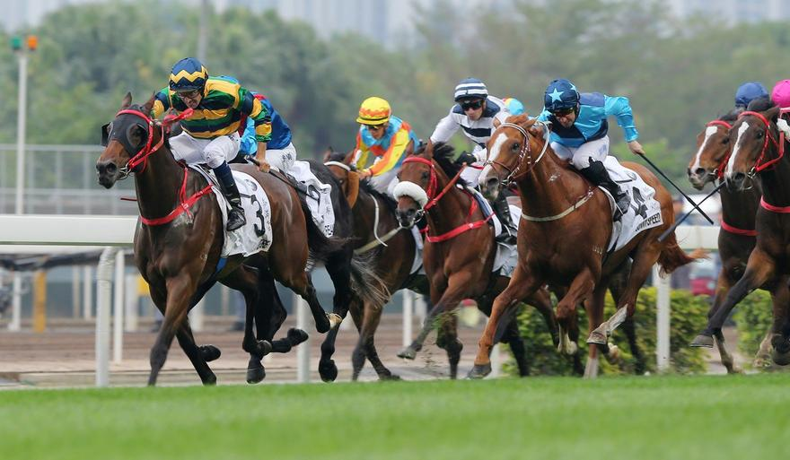A Taree maiden to Hong Kong Derby glory, the journey of Furore