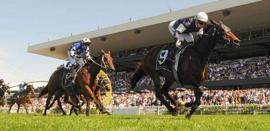 Australian Bloodstock Secures another Top Stayer