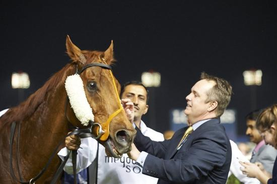 Medicean Man Primed For Final Trip To The Racetrack