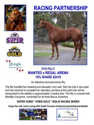 Wanted Out Of Regal Arena Filly