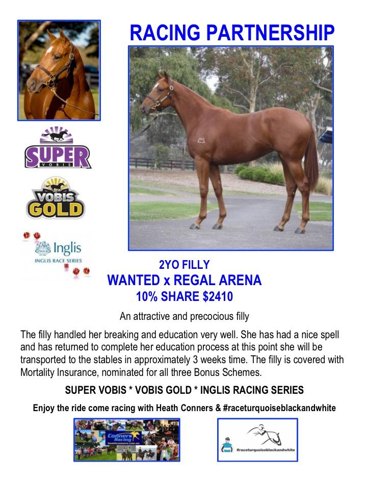 Wanted Filly Available