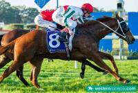 Class Prevails as Supposition Delivers