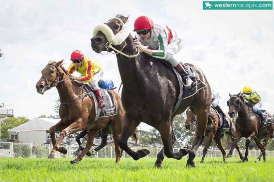 Bourne Supremacy sizzles at Ascot