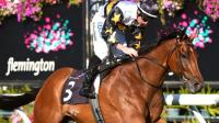 Exciting Spring looming for Slade Bloodstock!