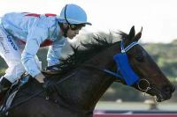 Utopian triumph for smart youngster