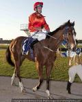 Kalahaar a Hannan's contender: McGruddy