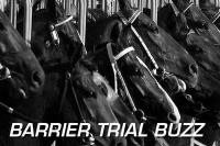 Barrier Trial Buzz: Lark Hill 12/08/13