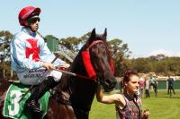 Captivated Point brilliant on Albany Cup Day