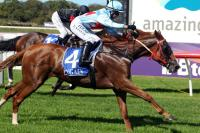 In The Loop makes it an Albany Cup Day double for Team Wolfe